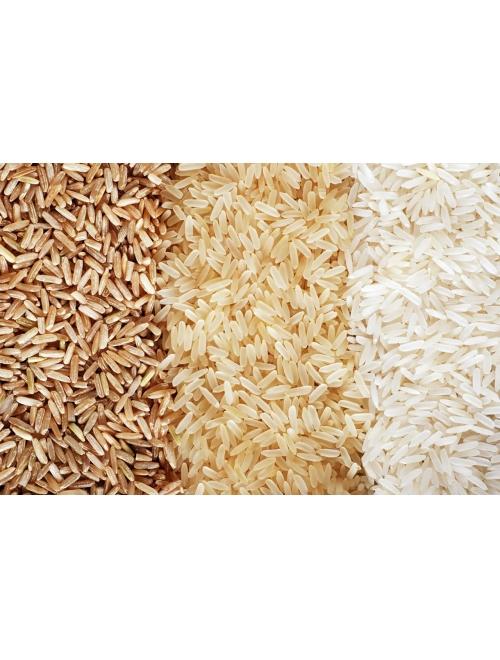 Рис круглозерный